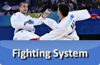 FightingSystem